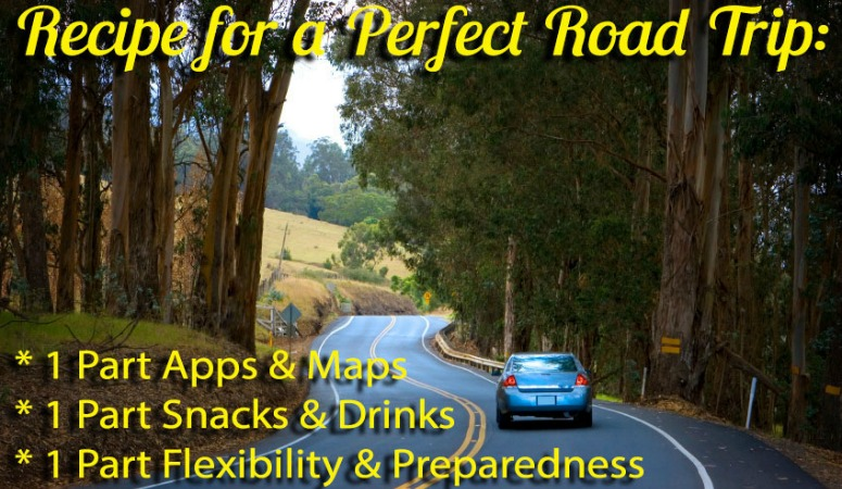 Episode 003: Tips for Family Road Trips