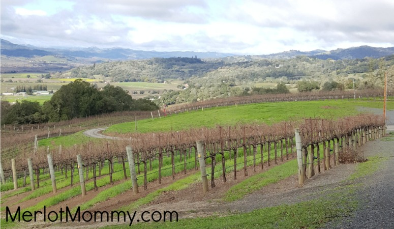 tips on visiting wineries with kids