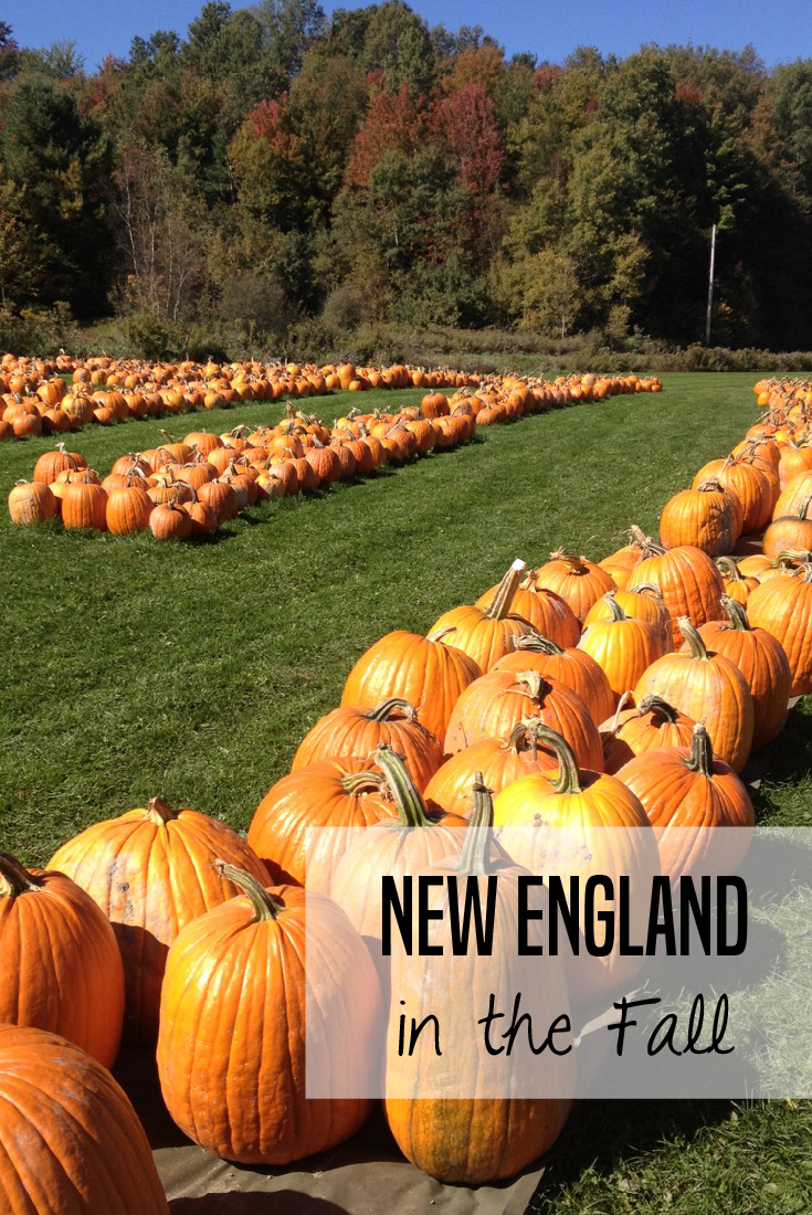Fall in New England -- how to make the most of the fall foliage with kids in Vermont, New Hampshire and Maine