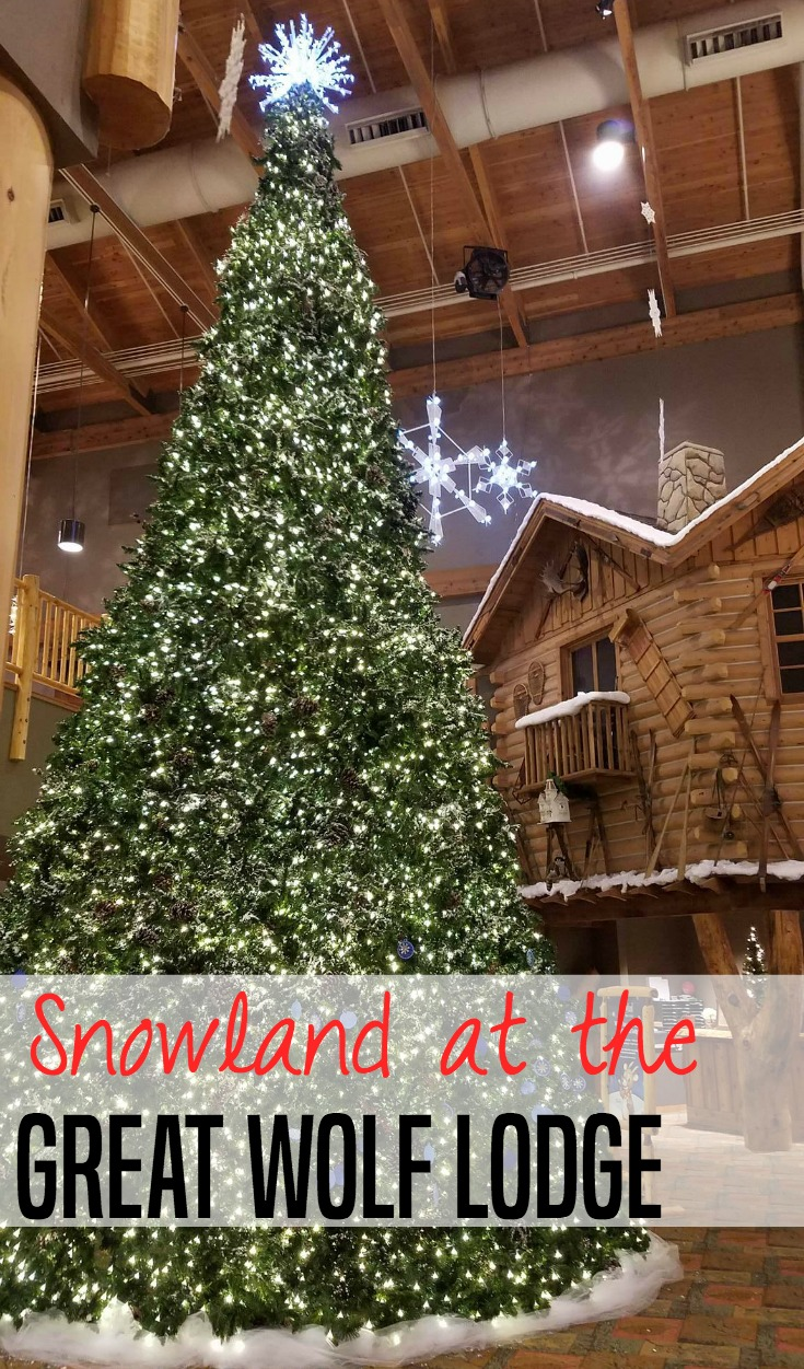 Snowland at the Great Wolf Lodge