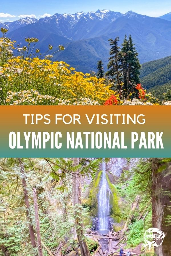 Tips for visiting Olympic National Park