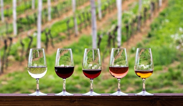 184: Wine Tasting Tips and Wine Travel