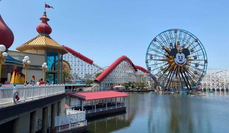 195: Kim's Trip to Disneyland and Irvine, California